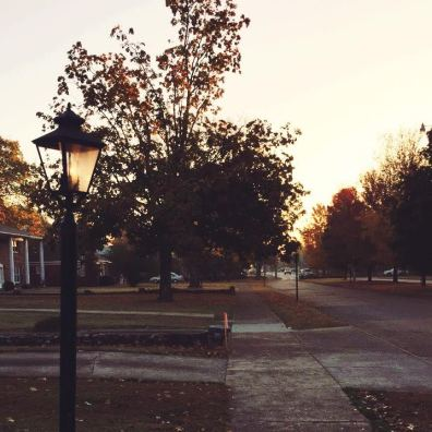 This was my view of campus during a sunrise run on Friday. Safe to say I understand the appeal of this place.